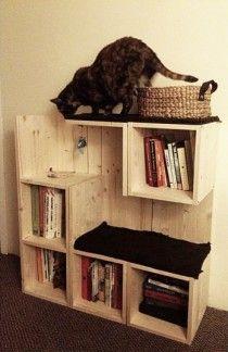 Un intérieur cat-friendly sans ruiner sa déco #bricolage #faitmaison #imaginat...