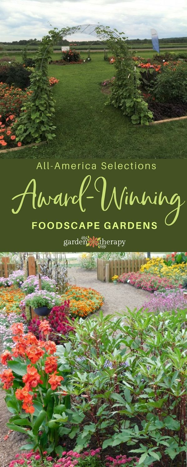 Tour the winning Foodscape Gardens! All America Selections set a challenge for g...