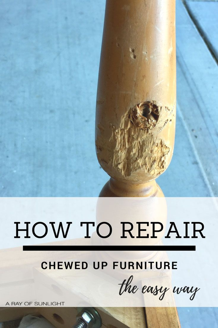 How to Repair Damaged or Chewed Up Furniture the Easy way with Bondo by A Ray of...
