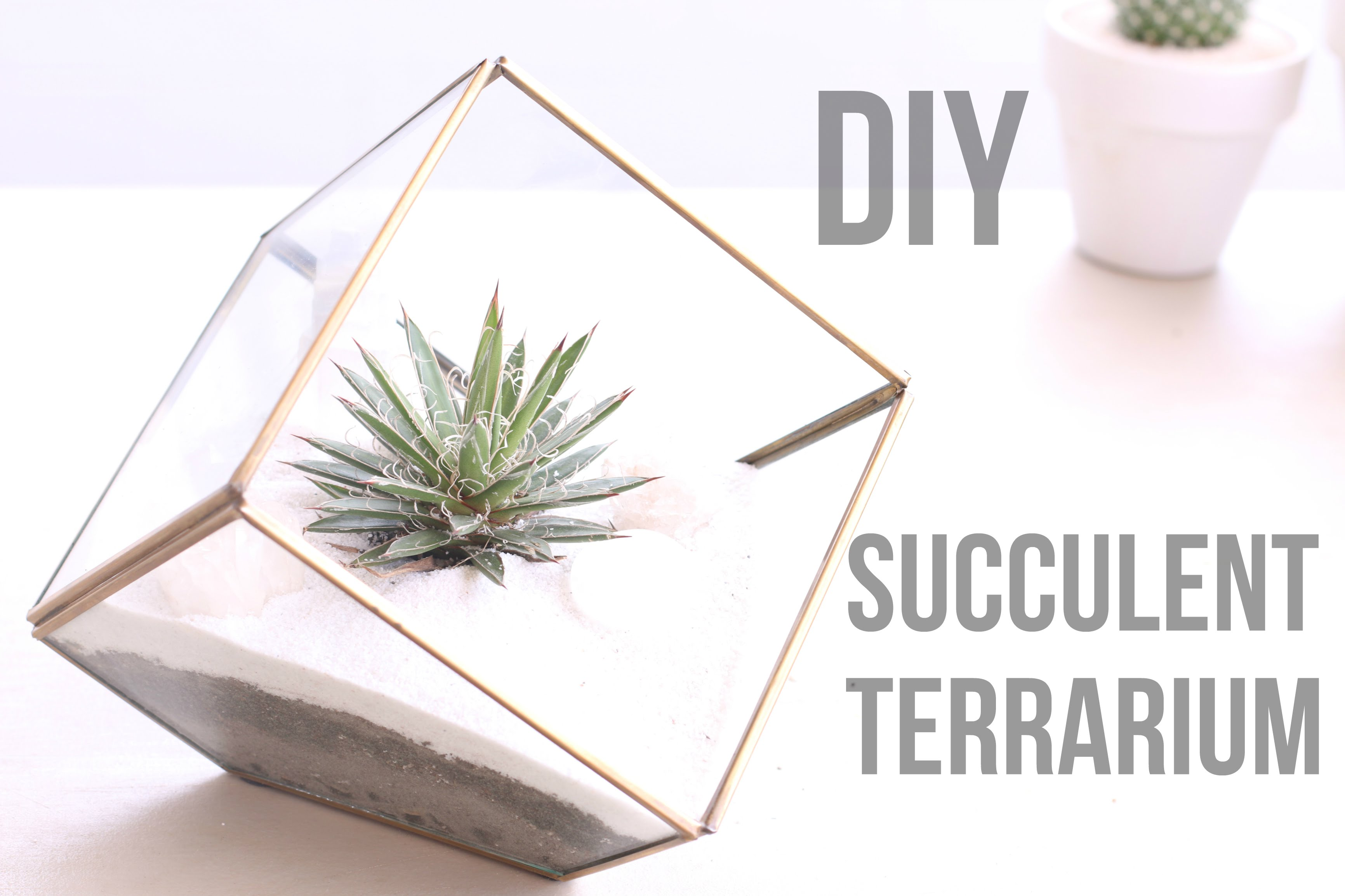 Diy Projects Video Diy Succulent Terrarium Ideas Diyall Net Home Of Diy Craft Ideas Inspiration Diy Projects Craft Ideas How To S For Home Decor With Videos