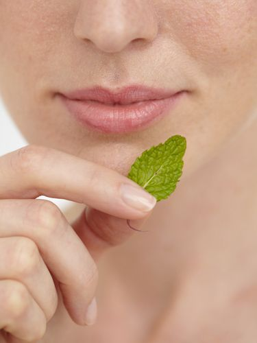 Mint tackles blemishes without drying skin. Peppermint contains menthol and ment...