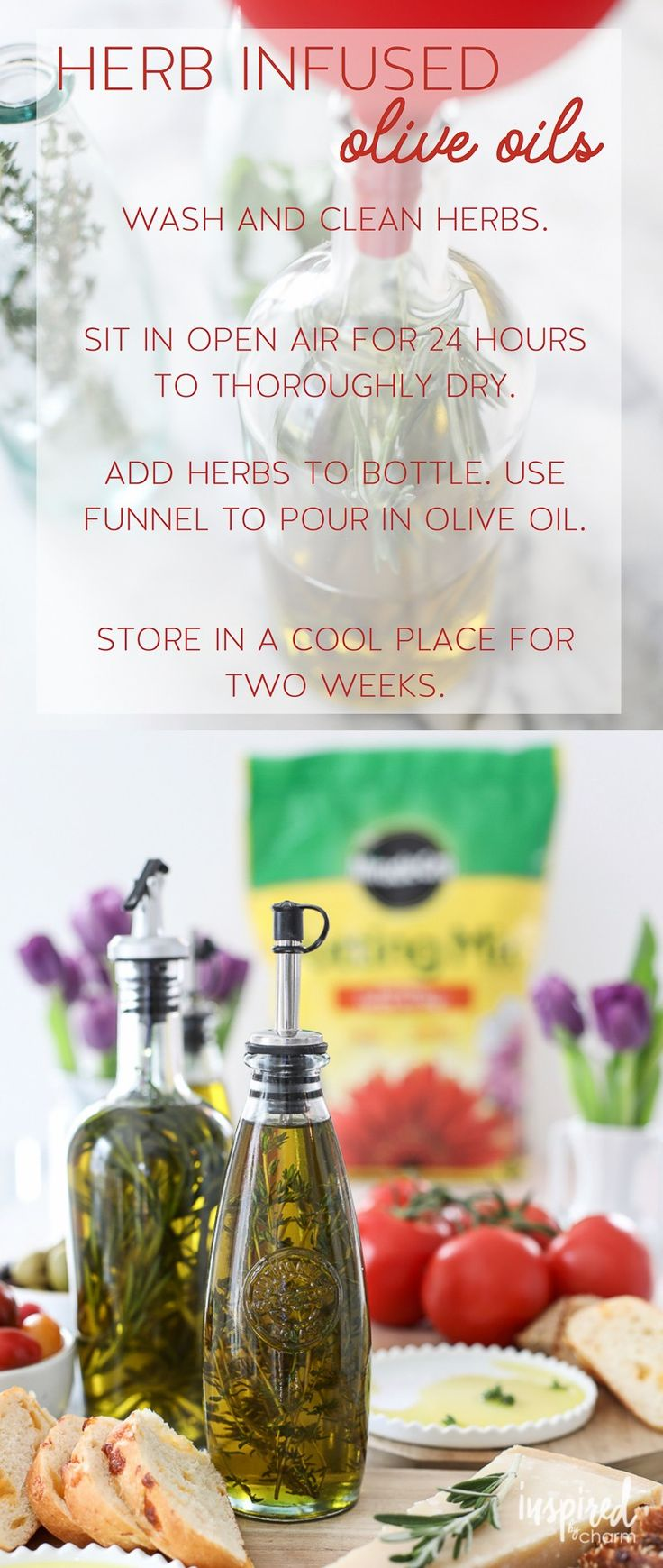 Combine entertaining and gardening by making your own Herb Infused Olive Oil wit...