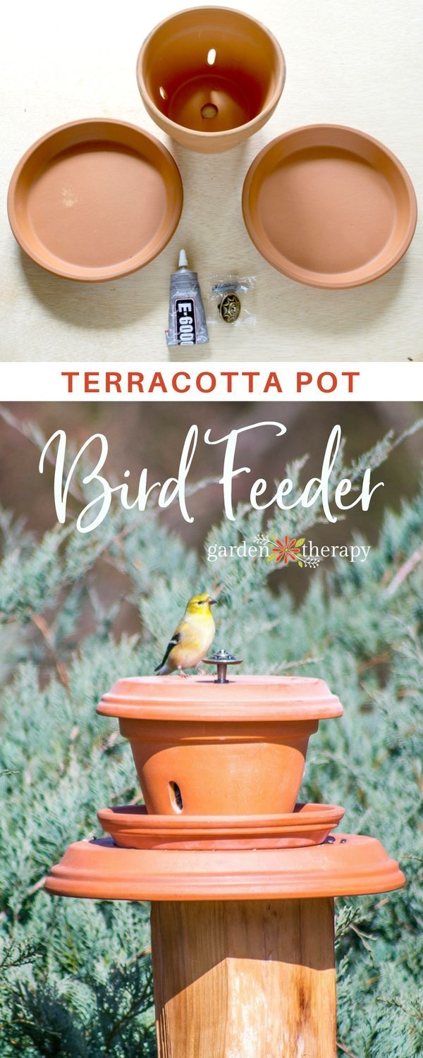 Create an easy pedestal terracotta bird feeder for your feathered guests. #gard...