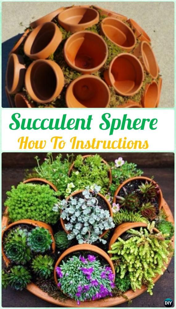 DIY Flower Clay Pot Succulent Sphere Instruction- DIY Indoor Succulent Garden Id...