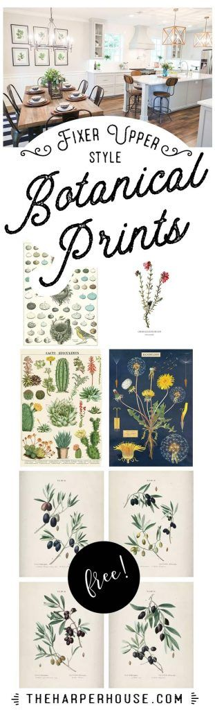 Great ideas on just HOW to display farmhouse style botanical prints. And a great...