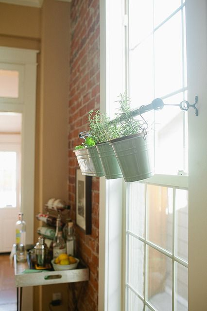 This is a great idea - Use a rod across a window for plants.