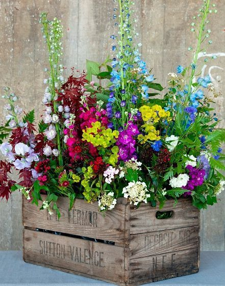 nice ~~Flowers fill a vintage wooden crate | delphiniums with viburnum, stocks, ...