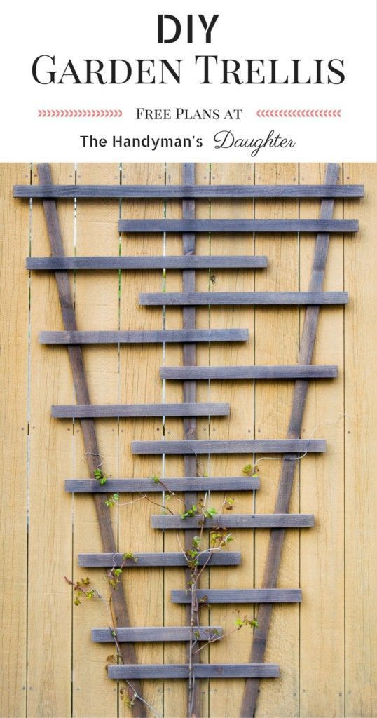 Build your own garden trellis for less than $10! This DIY garden trellis is perf...