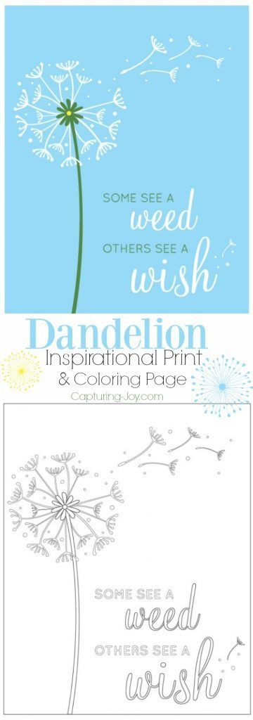 Dandelion Inspirational Print and Coloring Page. A great message to share with y...
