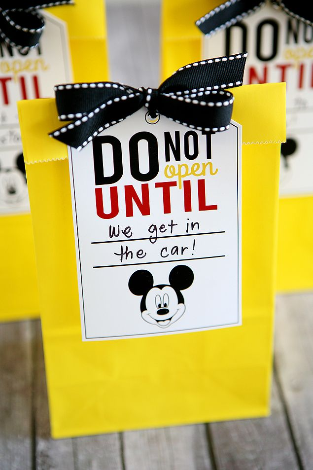 Disney Trip Fun Bags - Fill a few bags for the kids to open on their way to thei...