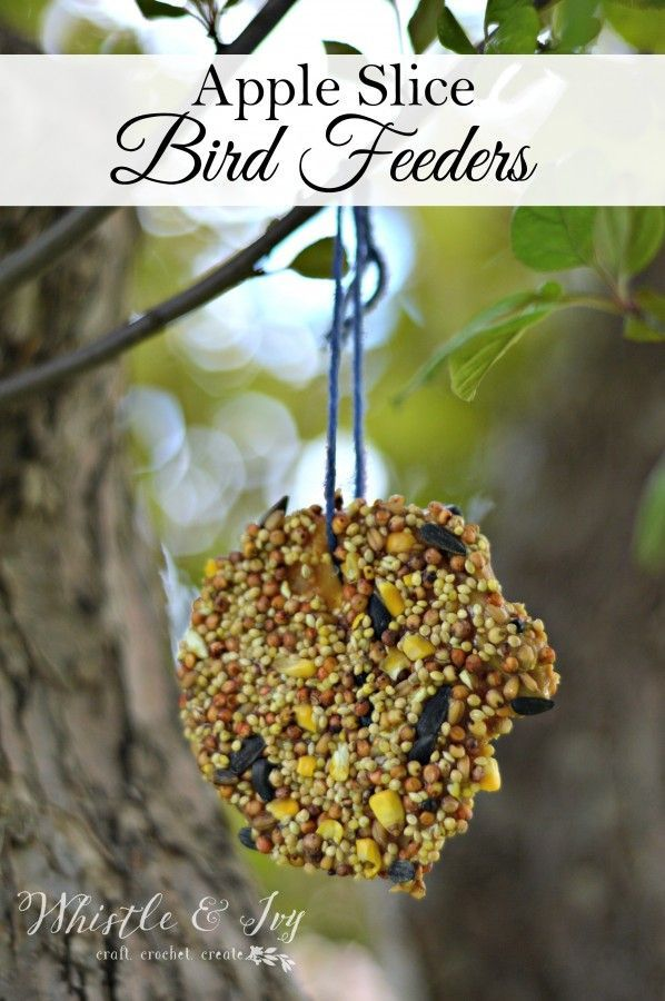 Make these fun and easy apple slice bird feeders: a fun kids activity to do this...