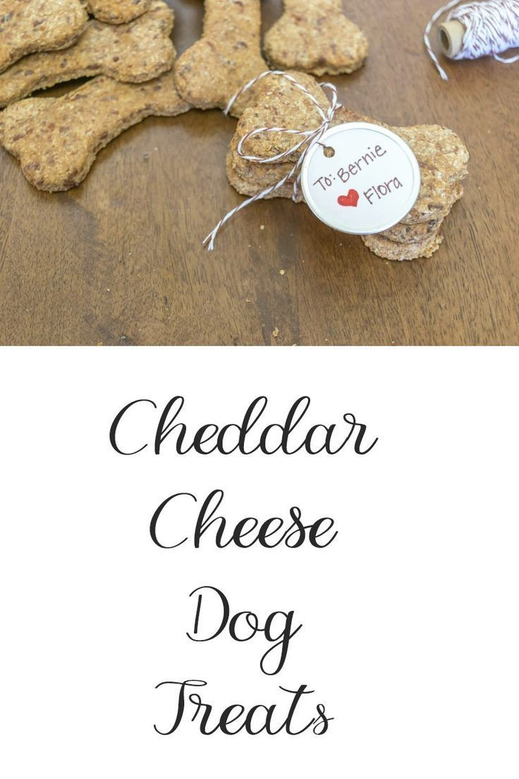 Simple recipe to make your own dog treats. Ingredients includes whole wheat, hon...