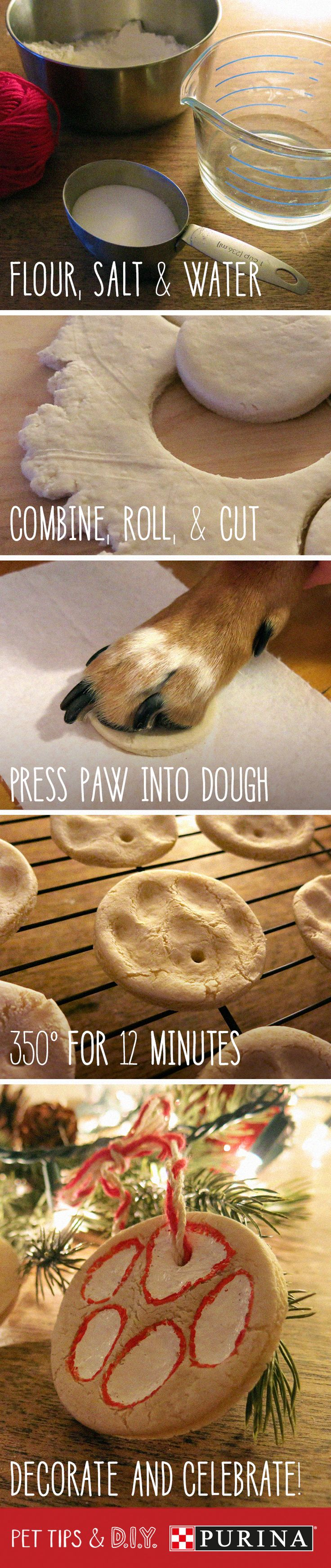 Make a DIY paw print ornament to celebrate the holiday season with your cat or d...