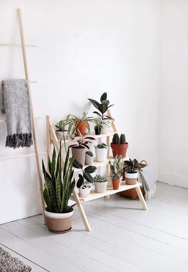 DIY Ladder Plant Stand | The Merrythought | Bloglovin'