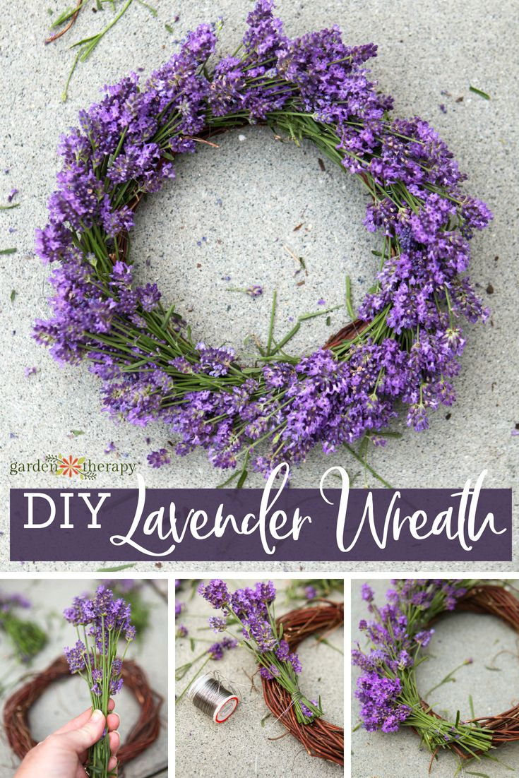 DIY Lavender Wreath - the great thing about pruning back your lavender plants is...