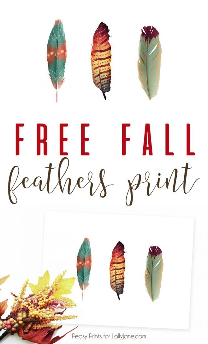 graphic regarding Printable Feathers identify Do it yourself Crafts : Absolutely free Printable Feathers Artwork, fantastic for a card