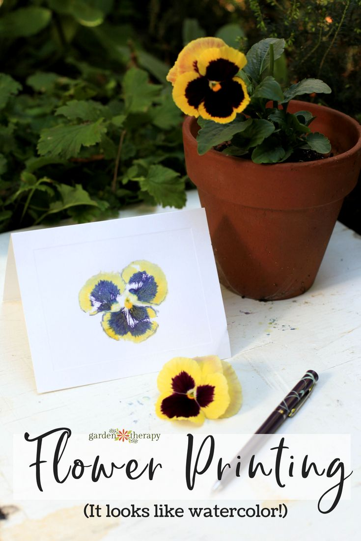 Hammered Flower Print Cards - this print is done with just a flower head - and i...