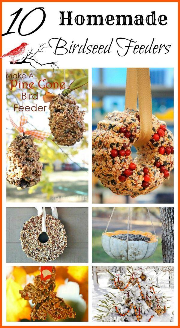10 homemade birdseed feeders