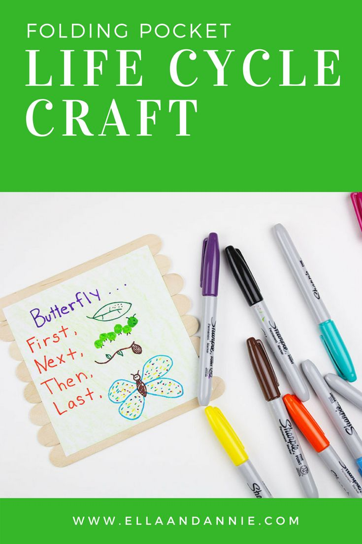 Diy Crafts Butterfly Life Cycle Preschool Craft Kids Will Love