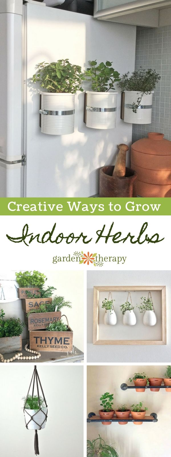 Find the Best Indoor Herb Garden for Any Space. Many herbs overwinter best indoo...