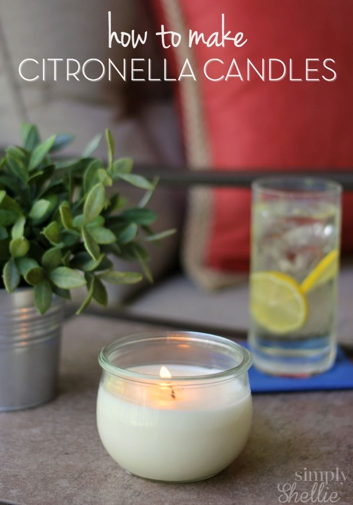 Keep the bugs away with these easy Homemade Citronella Candles. You can skip the...