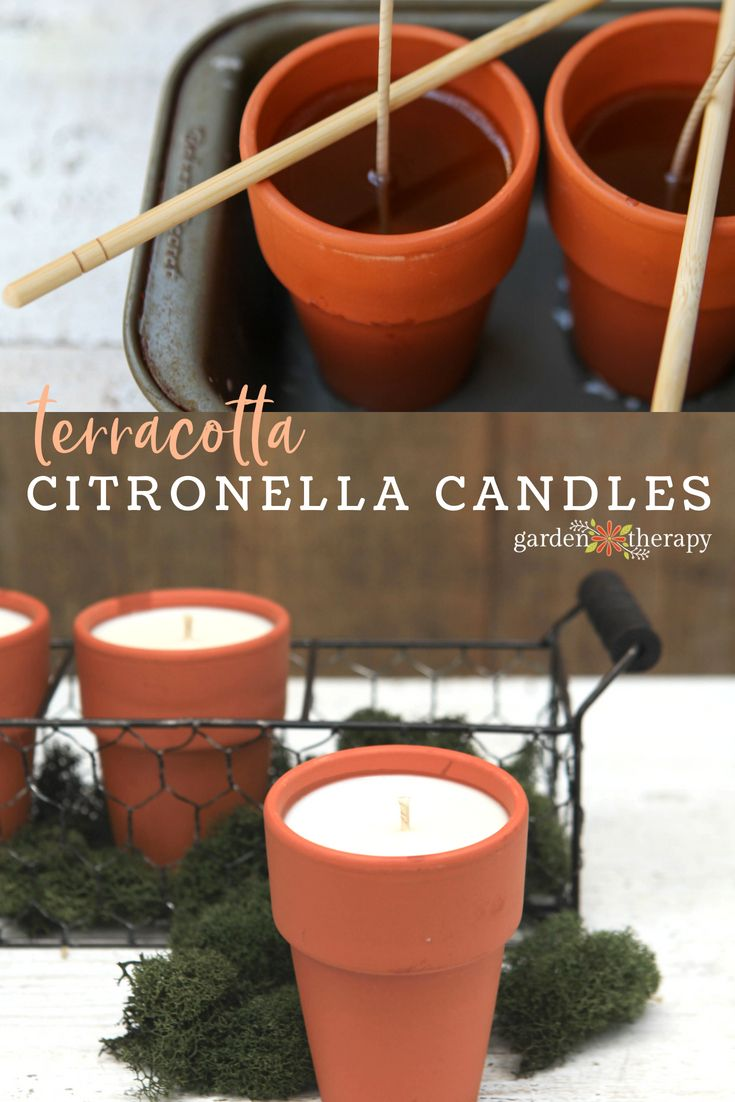 Terracotta citronella candles DIY Project - The citronella scent sends annoying ...