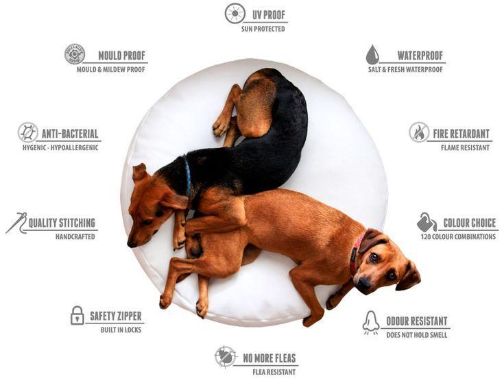 Dog Bean bags - Bliss Bean Bags Australia