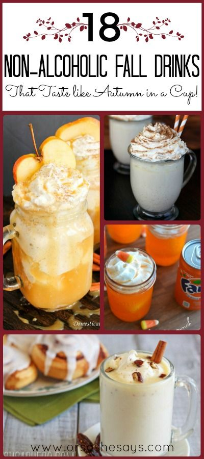 18 Non Alcoholic Drinks that Taste Like Autumn in a Cup (she: Mariah)