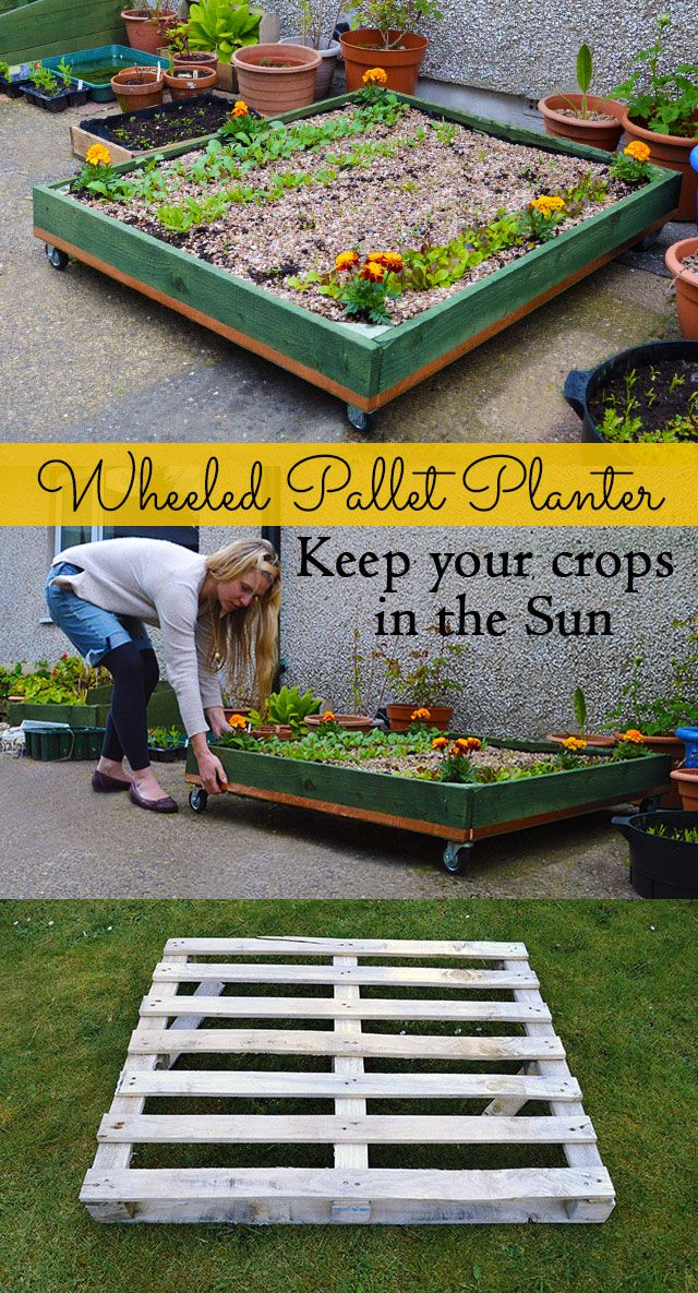 How to make a Wheeled Pallet Planter - it allows you to pull your plants around ...