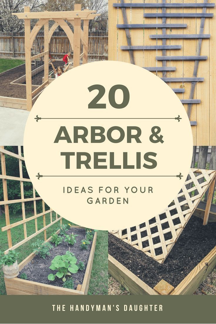 Looking for arbor or trellis ideas for your garden? Here are 20 amazing options ...