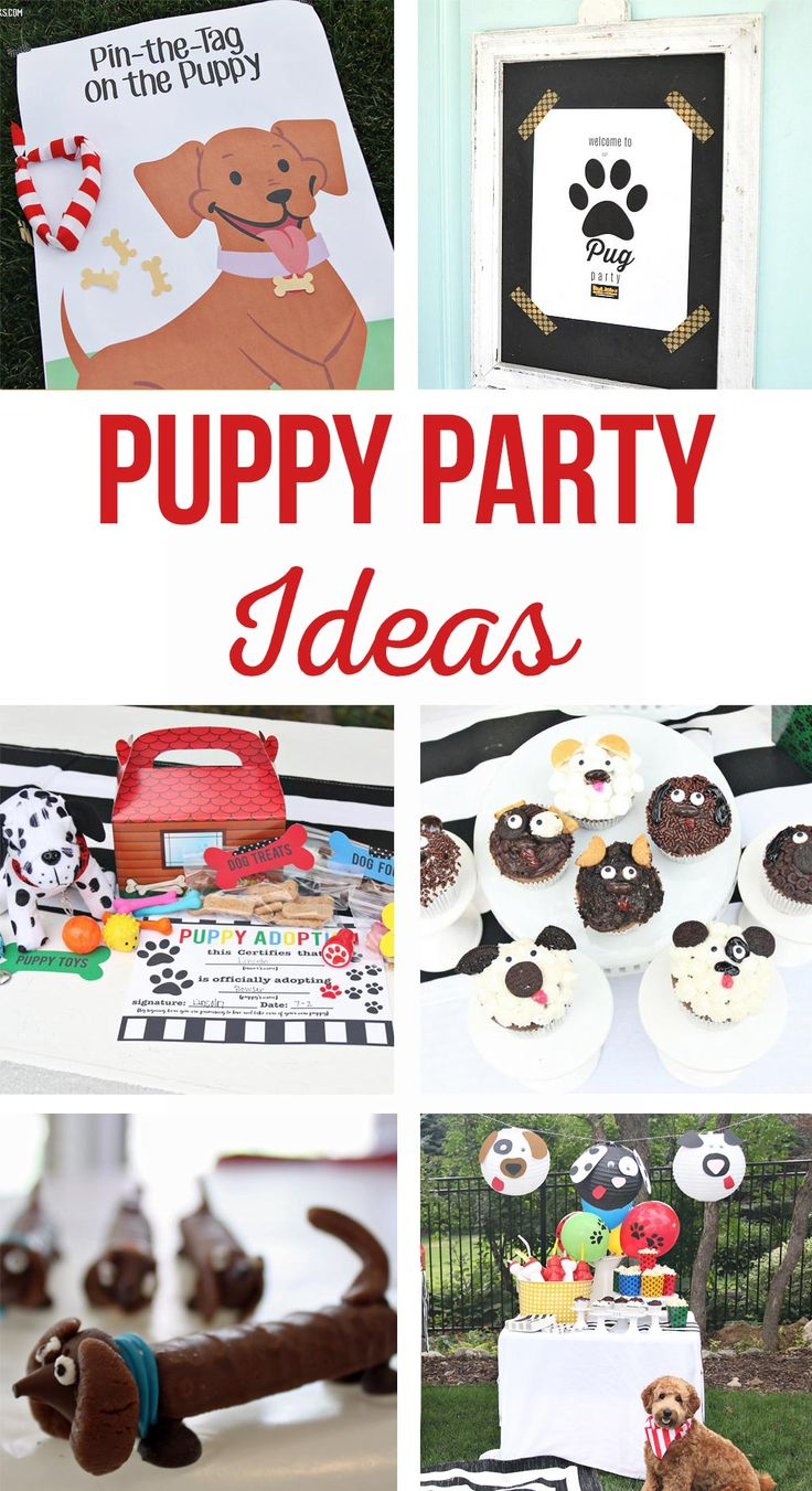 Puppy Party Ideas   So many party ideas for the best puppy party!  Party games, ...