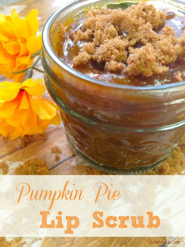 Pumpkin Pie Lip Scrub DIY recipe - So simple and economical and your lips will L...