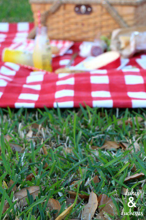backyard picnic with DIY blanket