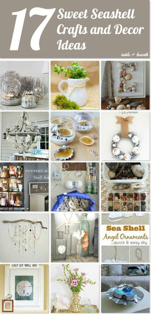 17 Amazing Seashell Craft Ideas - Table &  Hearth on Hometalk