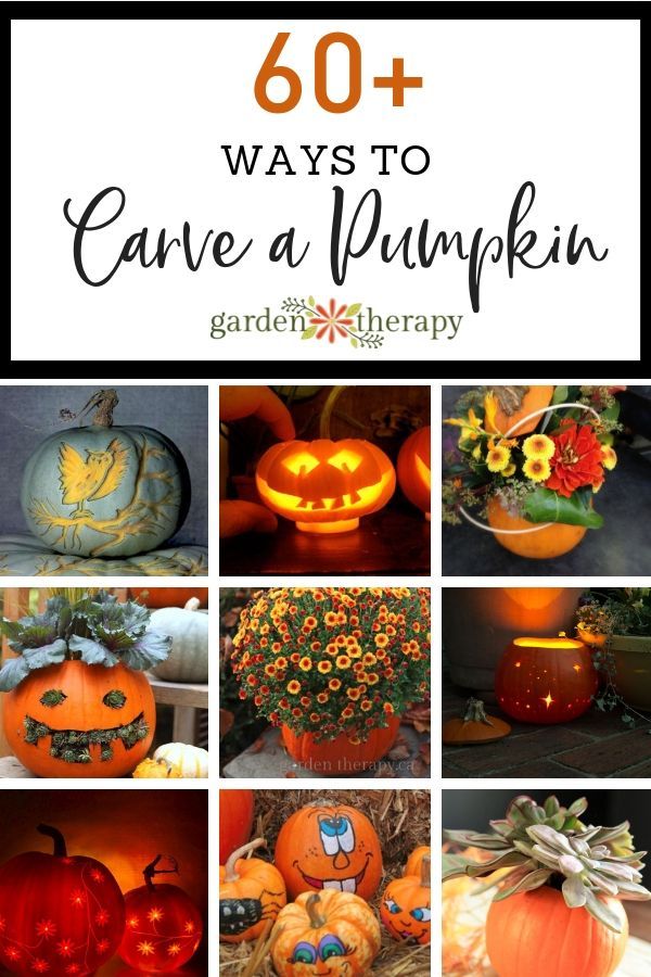 60+ Ways to Carve a Pumpkin. The most fabulous pumpkins that have ever been carv...