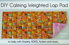 DIY Calming Weighted Lap Pad - Fairfield World Craft Projects
