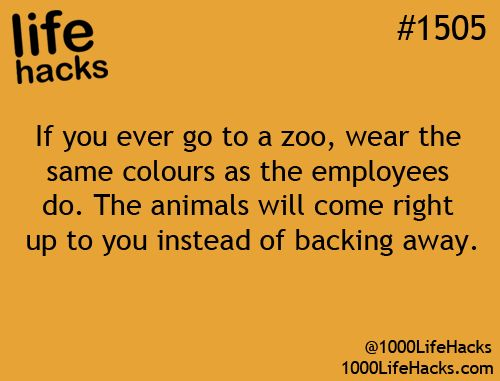 If you ever go to a zoo, wear the same colours as the employees do. The animals ...