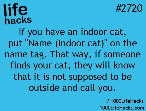 Name tag your cat. Too bad this didnt work for my beautiful Cottonball whom some...