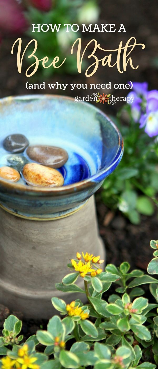 A bee bath is a simple bee water feeder that is easy to make and care for in you...