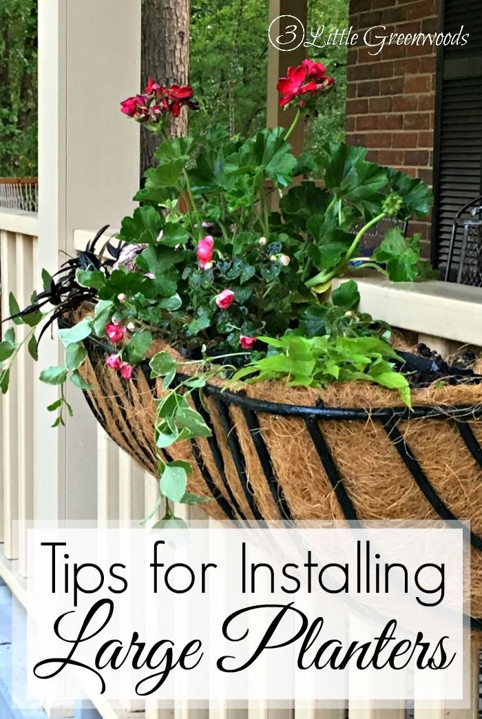 Add a big POW of colorful plants to your summer front porch! Install a trough pl...