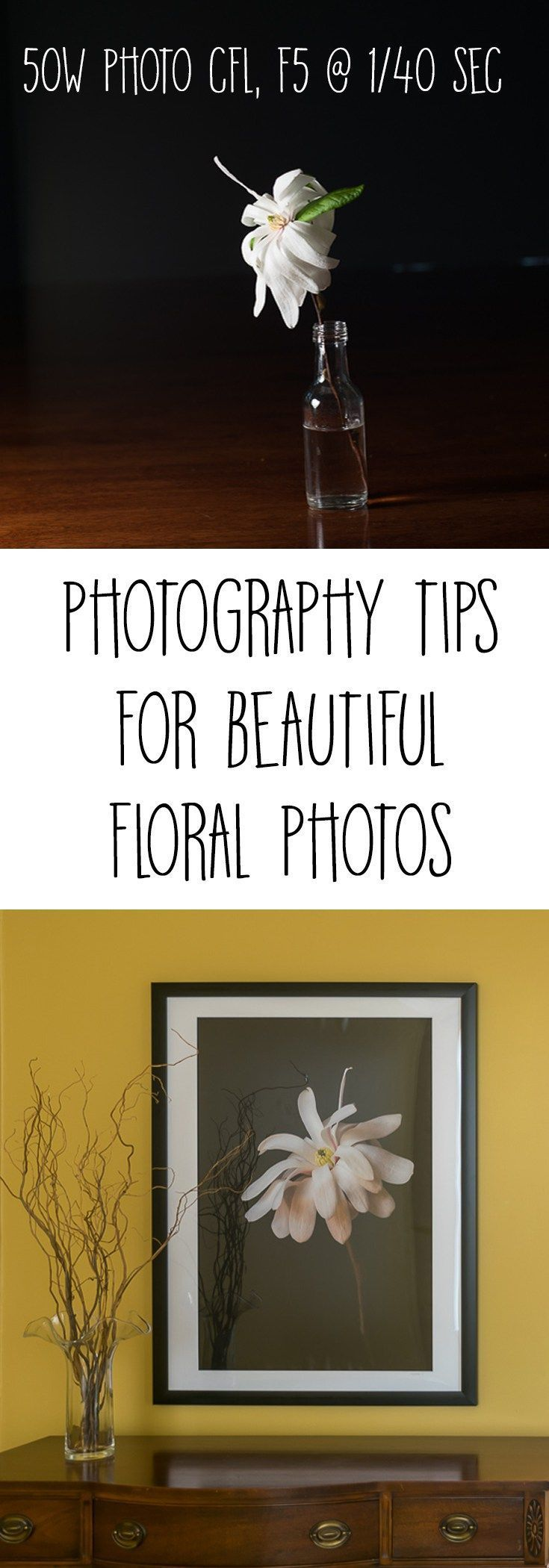 Quick tutorial on lighting for Floral Art Photography showing how to photograph ...