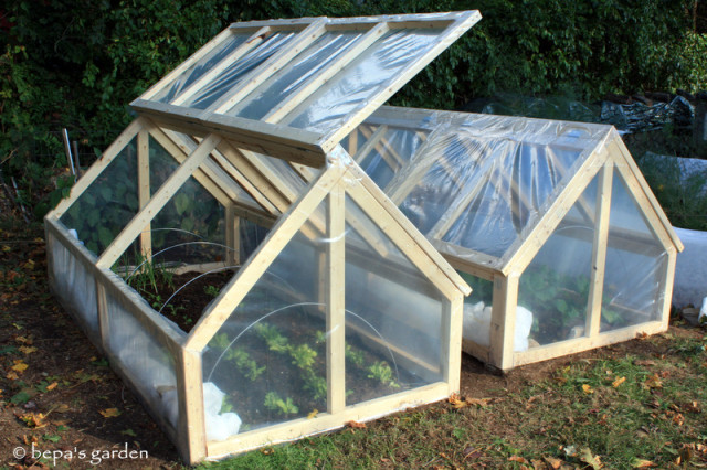 DIY-Mini-Greenhouse-3