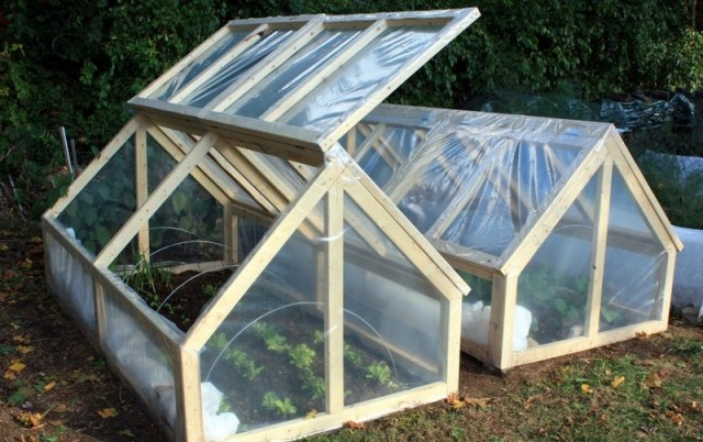 DIY-Mini-Greenhouse-1