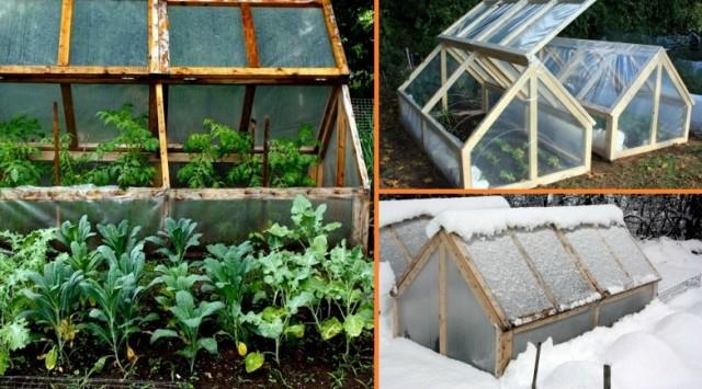 DIY-Mini-Greenhouse