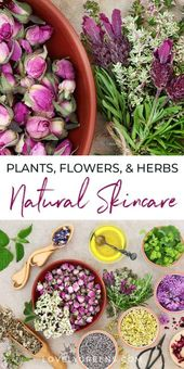Growing Plants, Flowers, and Herbs for Skincare • Lovely Greens