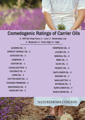 A Guide to Carrier Oils and Butters - Nature Moms
